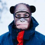 Orangutan facemask with ears
